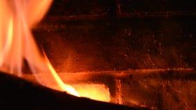 Trän bränner inom en spis stock video