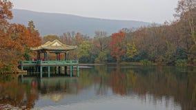 Trän i vattenpaviljongen Royaltyfri Fotografi
