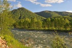 Träna på kullarna längs floden Arkivbilder