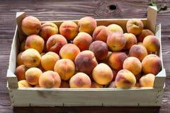 tränya persikor för ask Arkivfoton