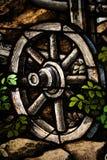 träoxehjul Royaltyfri Fotografi