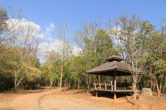 Träpaviljong för att vila i nationalparken Royaltyfri Foto