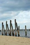 Träpelare vid Östersjön royaltyfri fotografi