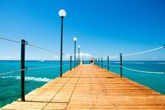 Träpir, exotiskt hav och en blå himmel för illustrationsommar för bakgrund härlig vektor Semester och resande begrepp royaltyfri bild