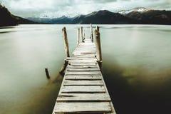 Träpir i den Patagonian sjön Arkivfoto