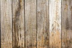 Träplankabakgrundstextur Fotografering för Bildbyråer