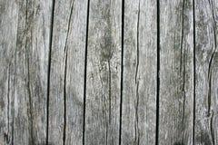 träplankor Arkivbild