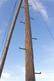 Träpol för gammal telefon med rungs för att klättra Arkivfoton