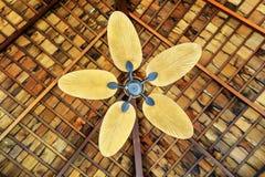 Träpropeller av takfanen royaltyfria bilder