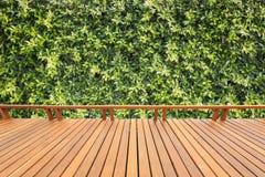 Träpryda eller däcka och växt i trädgårds- dekorativt Arkivfoton