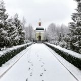 träräknad felik vinter för saga för skoghussnow arkivbilder