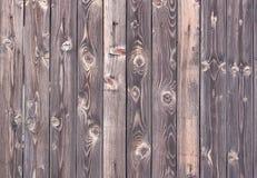 trärå textur för format Royaltyfri Foto