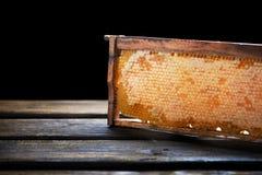 Träram med honungskakan som är full av honung, på svart fotografering för bildbyråer