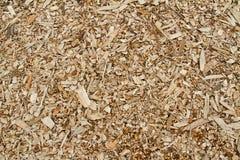 Träsågspån Royaltyfri Foto