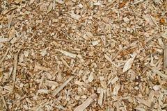 Träsågspån Royaltyfria Bilder