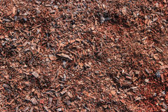 Träsågspånbakgrund Royaltyfri Bild