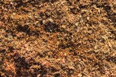 Träsågspånbakgrund Arkivbild