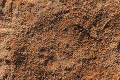 Träsågspånbakgrund Arkivfoto
