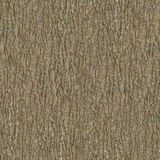 Träskäll Seamless Tileable texturerar Royaltyfri Fotografi