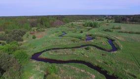 Träsk floder, gröna ängar, flyg- sikt lager videofilmer