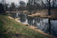 Träsk i höst Kall mörk sjö i urtids- skog Fotografering för Bildbyråer