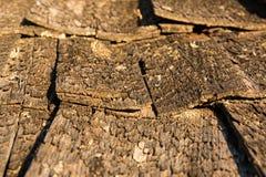 Träskakor av ett gammalt singeltak Arkivfoto