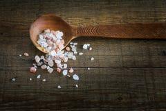 Träsked med kryddan Royaltyfria Bilder