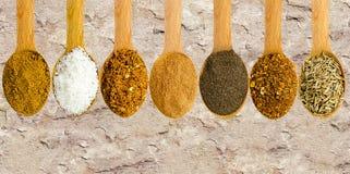 Träskedar med kryddor Royaltyfria Foton
