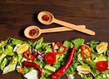 Träskedar med kryddor och bakgrund för organisk mat av grönsallat Italiensk matlagning, begrepp för organisk mat Bästa sikt, kopi royaltyfri bild