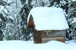 Träskjul i vintergranskog Arkivfoto
