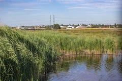 Träskland- och gräsplanvasser i en naturreserv på Rainham, Essex arkivfoton