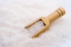 Träskopa på salt bakgrund för hav fotografering för bildbyråer