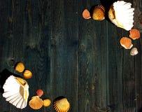 Träskrivbord med havsskal arkivfoton