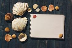 Träskrivbord med havsskal och den vita notepaden Arkivbild
