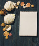 Träskrivbord med havsskal och den vita notepaden Arkivfoton