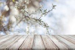Träskrivbord på abstrakt naturlig bakgrund för bokehsuddighet royaltyfri bild