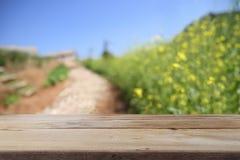 Träskrivbordutrymmeplattform på lantgård av fältbakgrund Royaltyfria Bilder