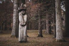 Träskulptur i skogen under nedgång arkivbilder