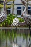 Träskulpturer av fåglar Royaltyfri Foto