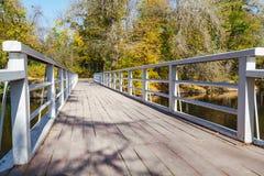 Träspång över floden om den ljusa höstdagen Arkivfoton