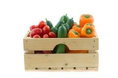 Träspjällåda med färgrika grönsaker Royaltyfri Fotografi
