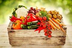 Träspjällåda som fylls med nya grönsaker för lantgård royaltyfri foto