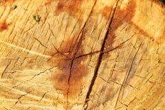 Träsprickatexturbakgrund arkivfoton