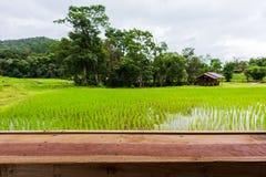 Trästång med risfältfält Royaltyfri Fotografi