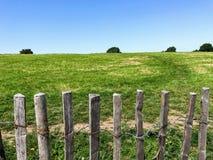 Trästaket Along The Fields med trädgränsen royaltyfri bild