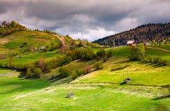 Trästaket av landsbygd på gräs- backar royaltyfri bild