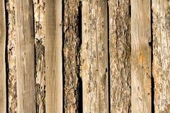 Trästaket av vertikala plankor Arkivbild