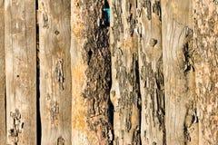 Trästaket av vertikala plankor Royaltyfri Bild