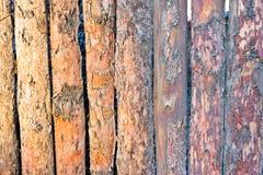 Trästaket av vertikala plankor Royaltyfria Foton