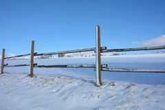 Trästaket i vinter med snö och blå himmel arkivbilder